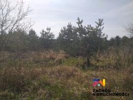 DZIAŁKI BUDOWLANE - GRONÓW 2 KM OD JEZIORA ŁAGOWSKIEGO
