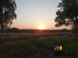 Nieruchomości Świebodzin - Super działka budowlana w Mostkach